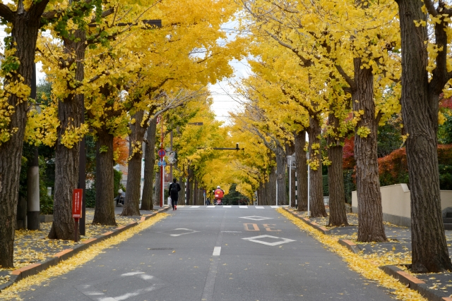 イギリス発祥のガーデンシティ(田園都市)構想と日本のニュータウンの大きな違い